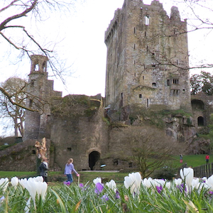 The Blarney Castle Experience